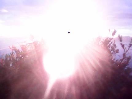 matahari pagi 2017